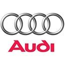 Audi Bevestigingsclips