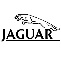 Jaguar Bevestigingsclips